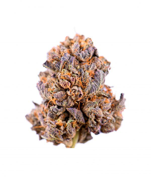 Cannabis Purple CBD